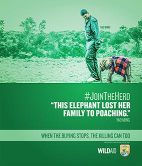 Stop Wildlife Trafficking